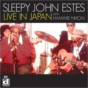sleepy john estes - hamie nixon